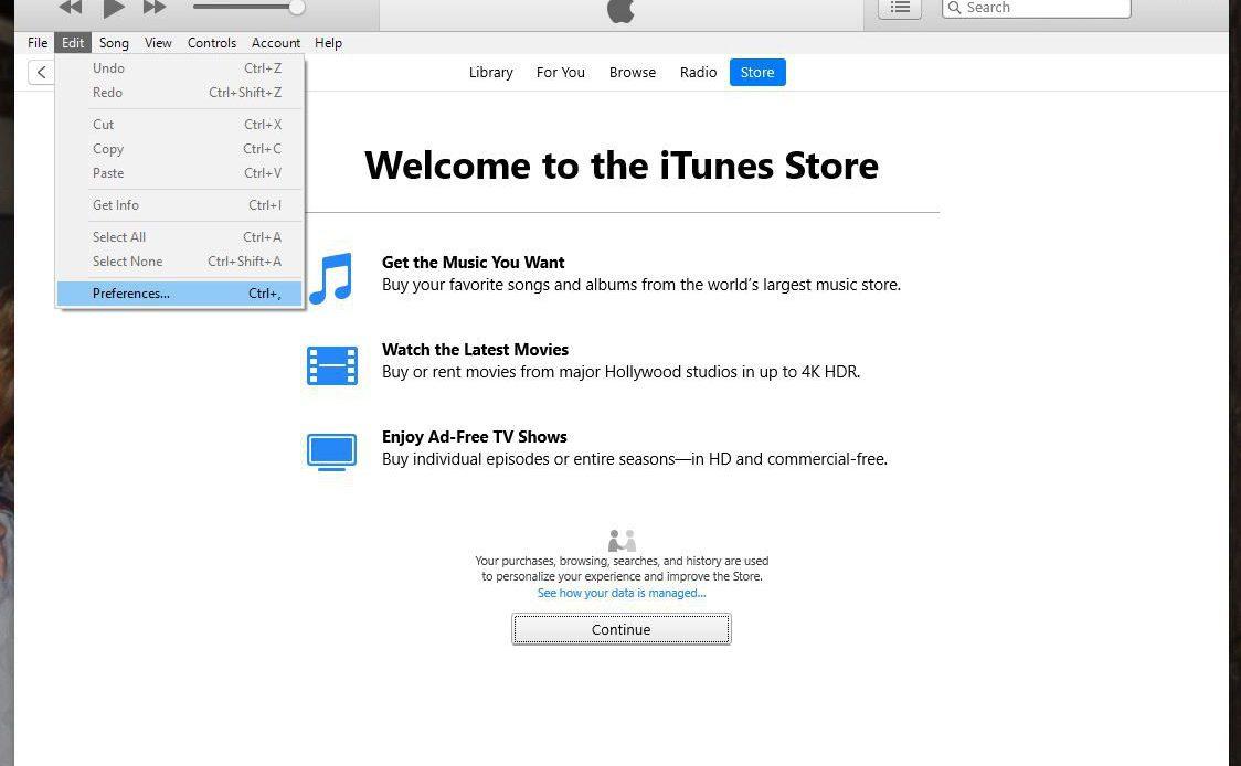 Настройки в меню iTunes Edit.