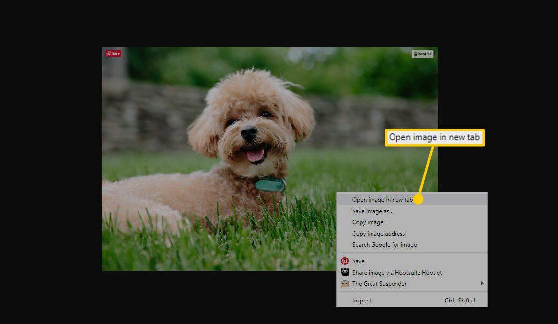 Скриншот открытого изображения в новой вкладке