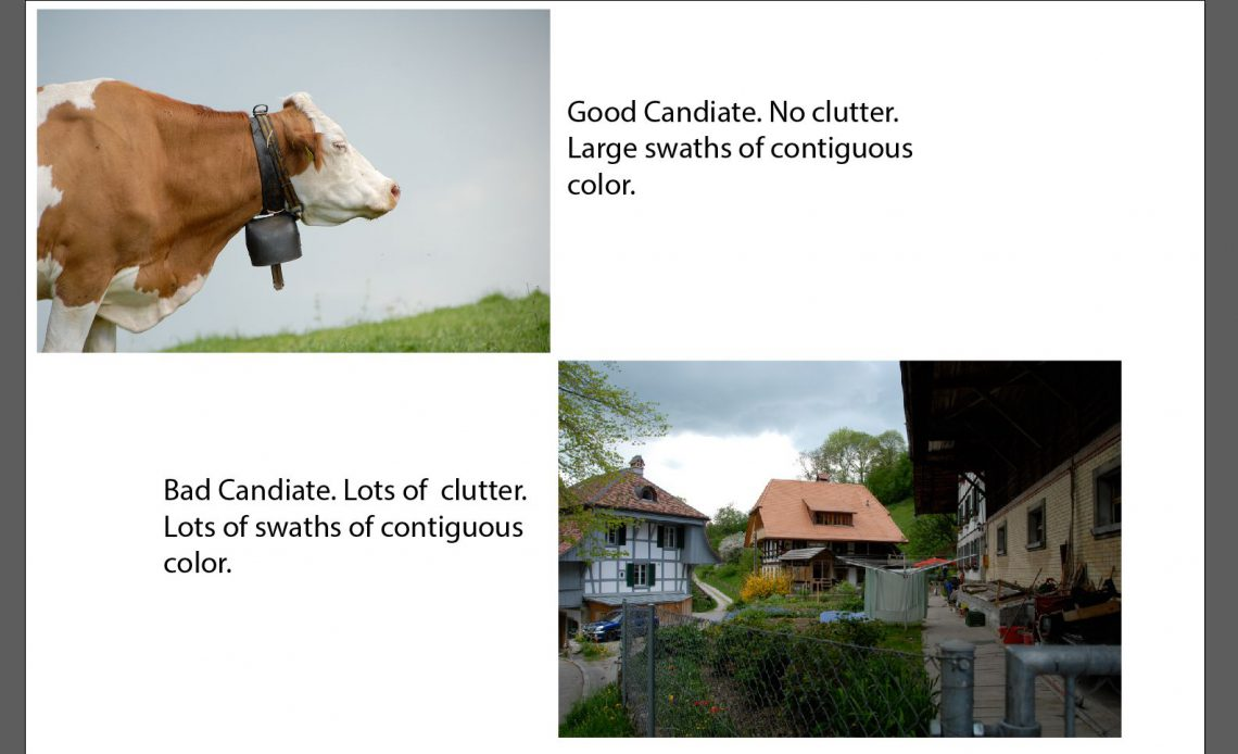 Изображение показывает корову и другое изображение деревни.  Имидж деревни имеет беспорядок и не является хорошим кандидатом.