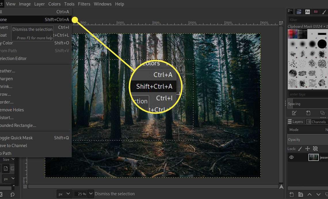 Снимок экрана GIMP с выделенным сочетанием клавиш Select Nonex