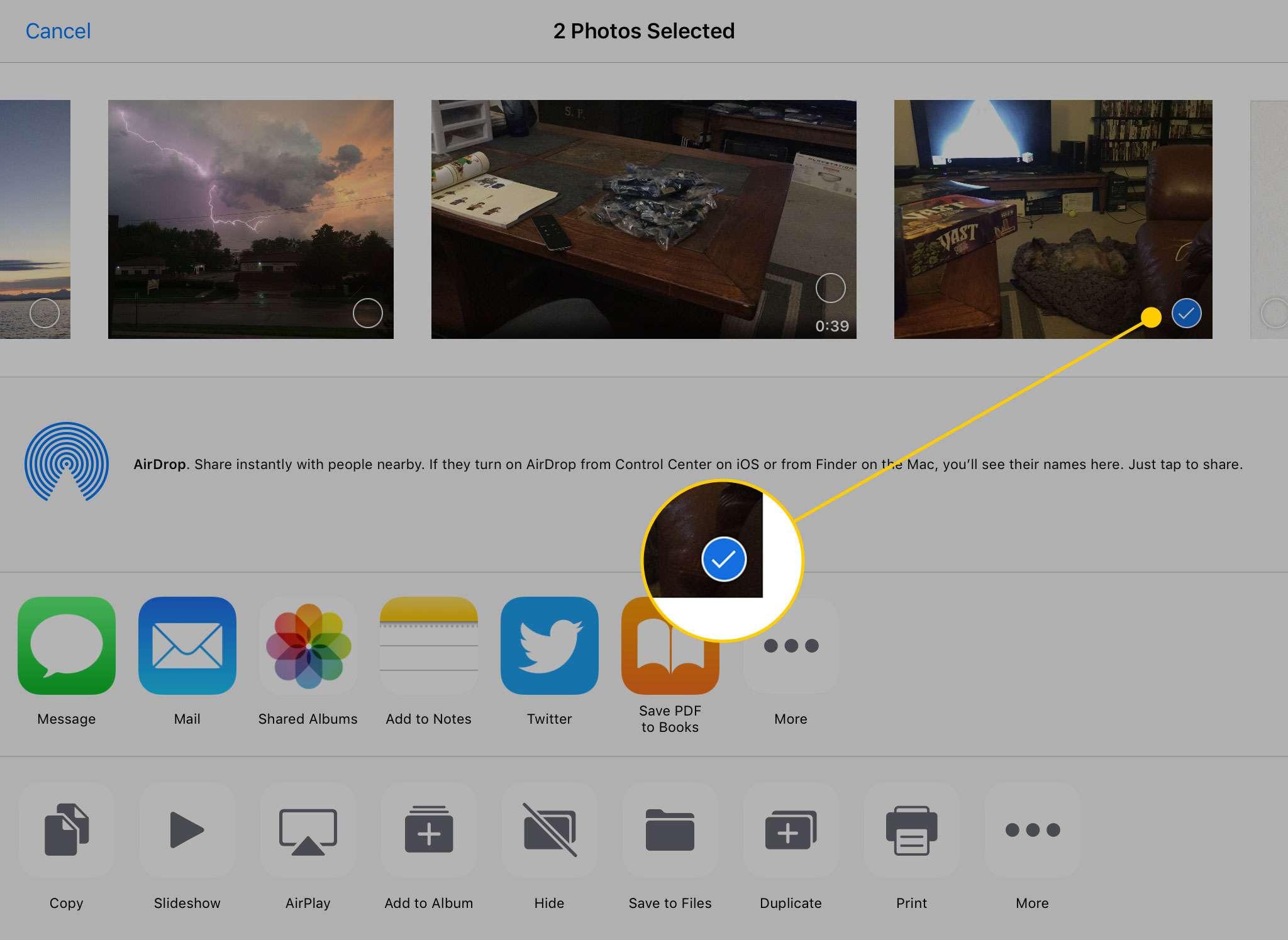 Меню «Поделиться» на iPad с выделенной синей галочкой рядом с выбранной фотографией