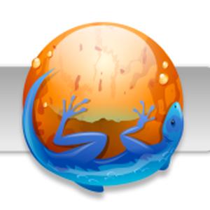 Как сделать резервную копию и восстановить Mozilla Firefox и Thunderbird [Windows]