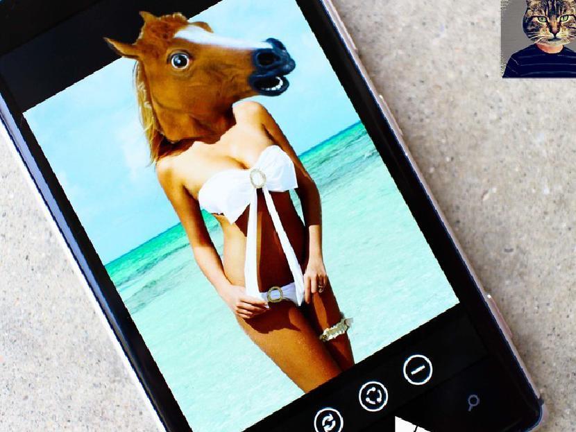 Животное Лицо Windows Phone