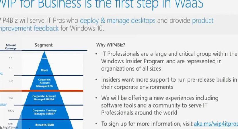 Открывается регистрация для программы Microsoft Insider для бизнеса в Windows.